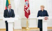 Saulius Skvernelis, Dalia Grybauskaitė