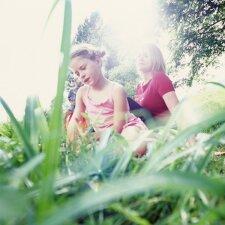 Kaip nuo erkių apsaugoti vaikus: aiškūs ir išsamūs patarimai