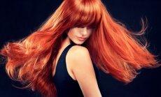Gydytoja G. Šabūnienė atskleidžia negailestingą tiesą apie plaukus