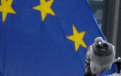 Опрос: немцы и французы выступили за усиление сотрудничества в ЕС