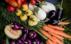 10 auksinių daržo taisyklių, kad galėtumėte džiaugtis gausiu ir sveiku derliumi