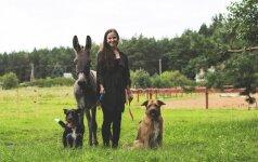 Didelės širdies istorija: žirgą pirkti norėjusi mergina priglaudė asiliuką