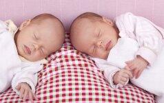 Dvynių mamai įkyrėjo aplinkinių dėmesys ir ji kai ką sugalvojo (FOTO)