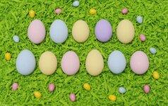 Nieku gyvu nedažykite kiaušinių šiais būdais, ypač, jei auginate vaikus