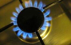 СМИ: РФ и Беларусь предварительно согласовали формулу расчета цены на газ