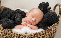Įspūdinga: naujagimio ir 9 šuniukų fotosesija (FOTO)