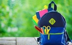A. Landsbergienės patarimas, kokios klaidos nepadaryti besiruošiant į mokyklą