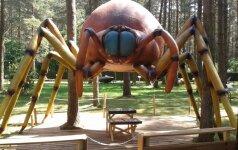 Milžiniško dydžio vabzdžių parkas Lietuvoje laukia ne tik vaikų FOTO