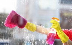 Namų švaros atmintinė: kaip pasiruošti vasarai?