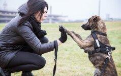 Pievoje rasta šunytė šeimininkams ne tik malonumas, bet ir išbandymas