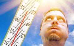 В Литву возвращается жара