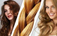 Kaip rasti tau idealiai tinkančią plaukų spalvą