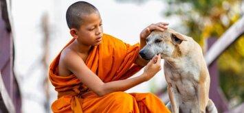 Vaikų auklėjimas pagal tibetiečius