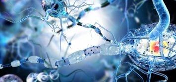Išsėtinė sklerozė dažniau užklumpa jaunus žmones: ką reikia žinoti