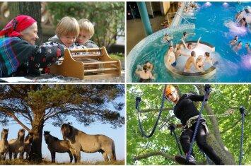 Ką su vaikais veikti Liepojoje: 17 smagių idėjų