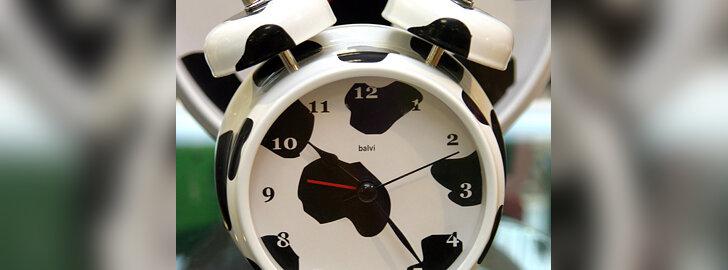 Laikrodis. Parduotuvė Alandeko