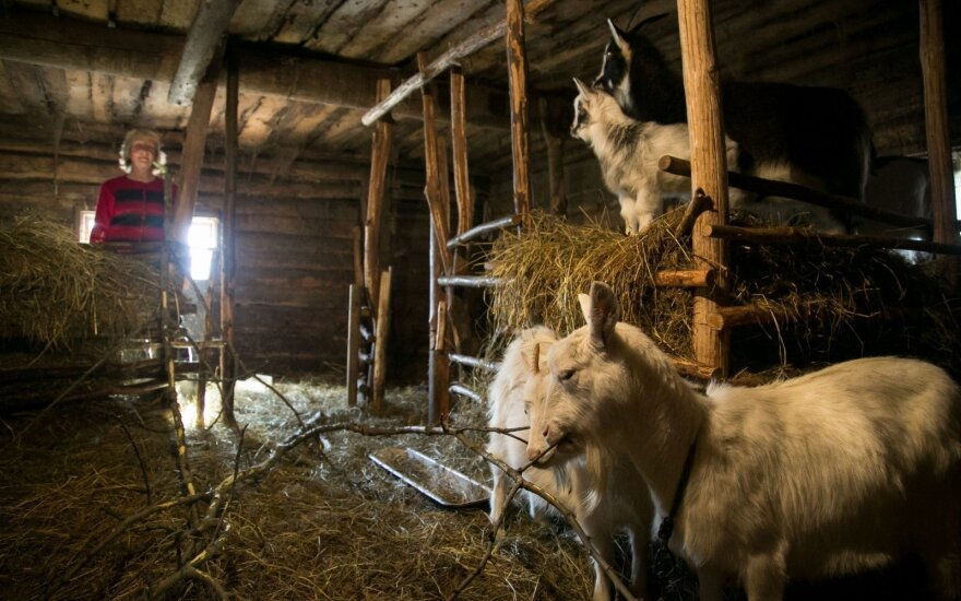 Литовское село. Пенсии на неделю не хватает
