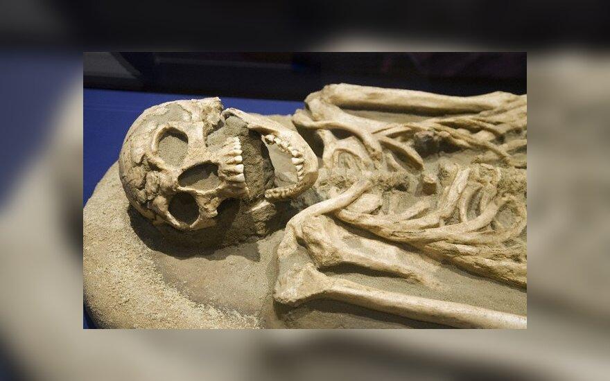 В Швеции продается дом со скелетом русского хозяина