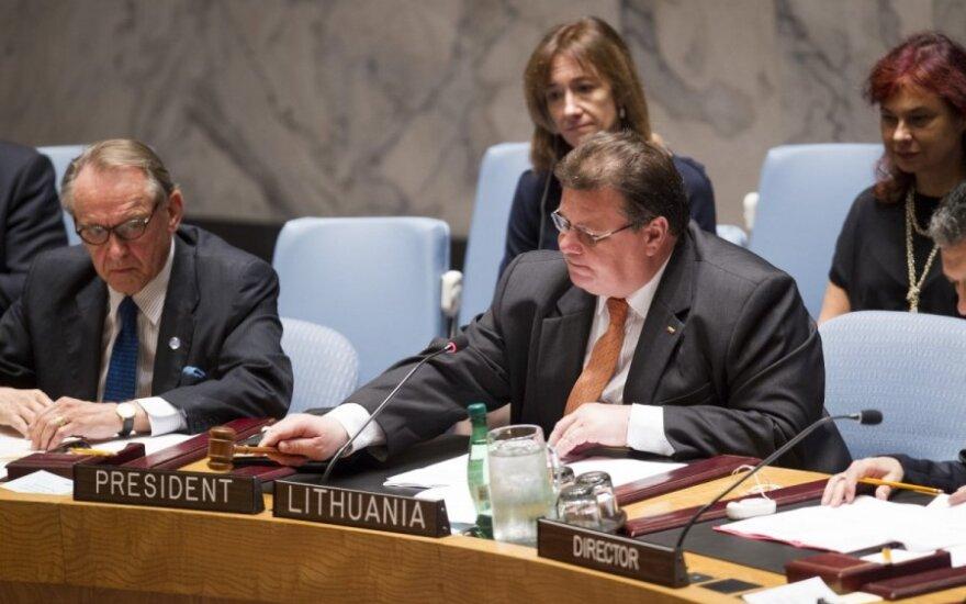 Linas Linkevičius at UN Security Council