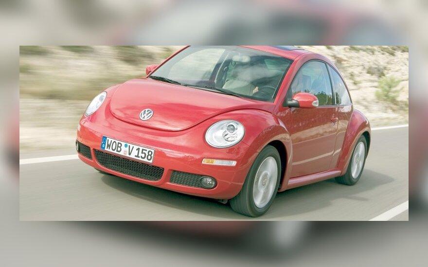 Volkswagen интригует живыми жуками