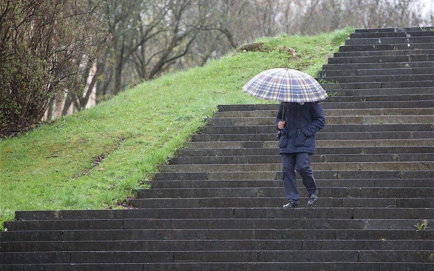 Погода: с середины недели выпавший снег смоет дождь