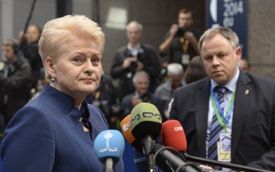 Грибаускайте: ЕК подготовила пакет санкций против РФ, но пока он не рассматривается