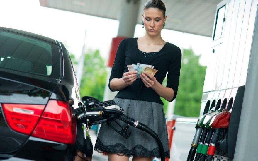 Предприниматели не пытаются искать более дешевый бензин