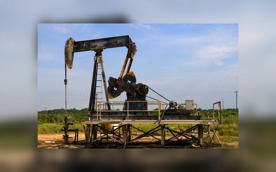 Западные страны, договорившись, обвалили мировые цены на нефть
