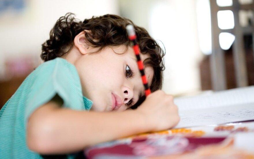 vaikas, berniukas, mokinys, namų darbai, mokykla, pradinukas, pirmokas