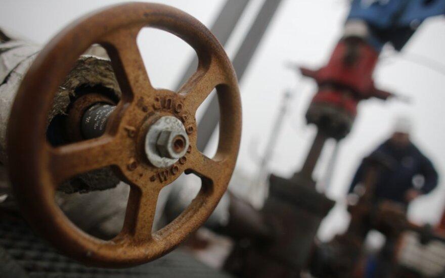 Nafta, dujos, skalūnų dujos, gavyba