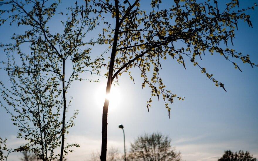 Синоптик: солнце в эти дни особенно опасно