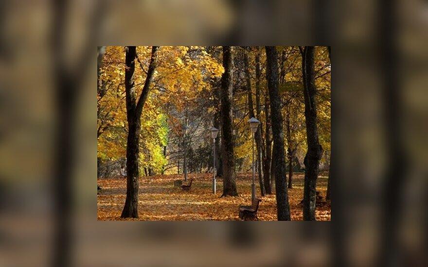 Какое начало осени можно ожидать: когда наступит холодный сезон