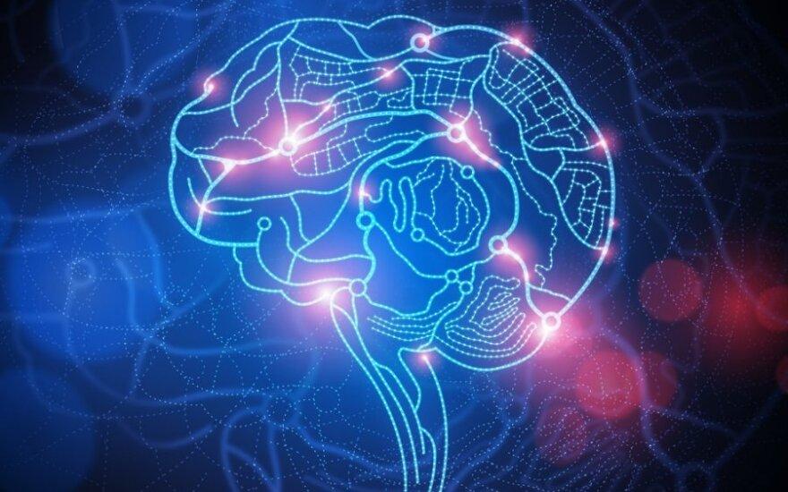 Czy mózg jest kluczem do rozwoju komputerów?