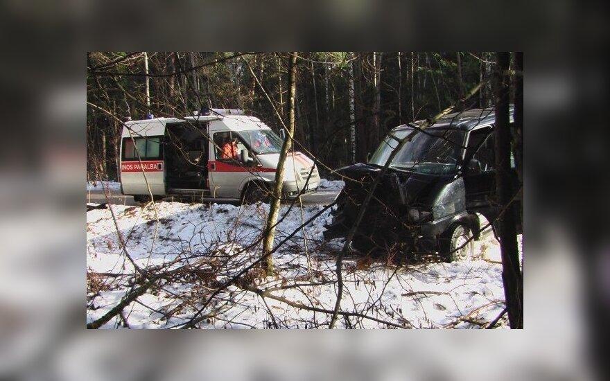 В Шерняйском лесу микроавтобус врезался в дерево