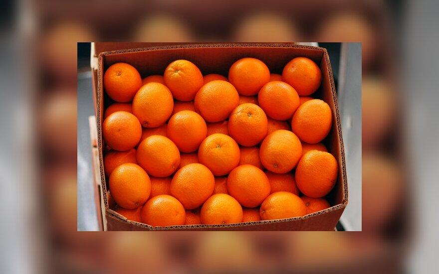 Задержали 72 тонны апельсинов, содержащих пестициды