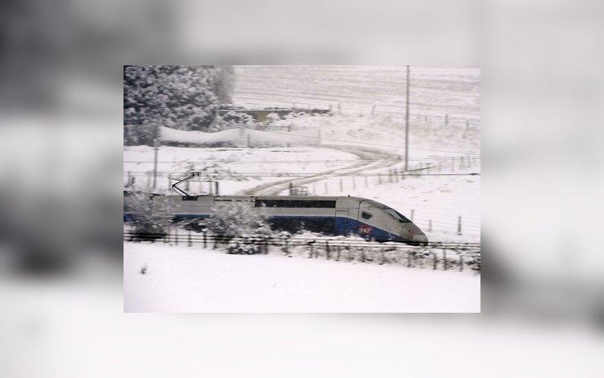 В поезде Париж — Венеция задержан египтянин со взрывчаткой