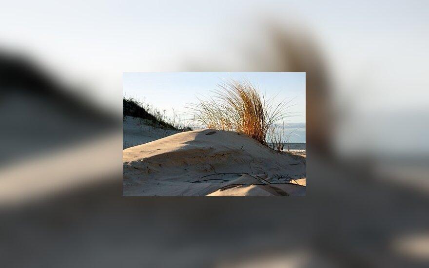 Мужчина возил в дюны малолетних