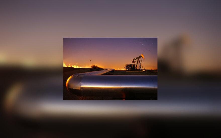 Nafta gavyba, telkiniai