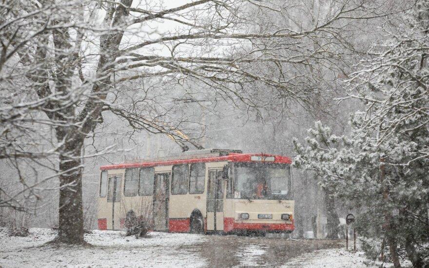 Прогноз сбылся: в Вильнюсе снег будет идти до утра