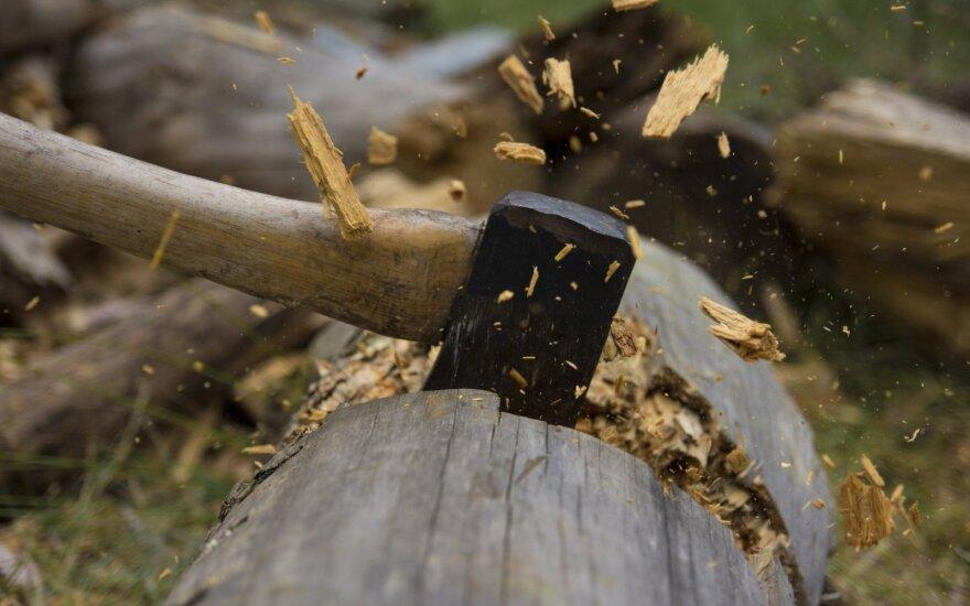 В Волгограде по подозрению в терроризме арестовали лесорубов