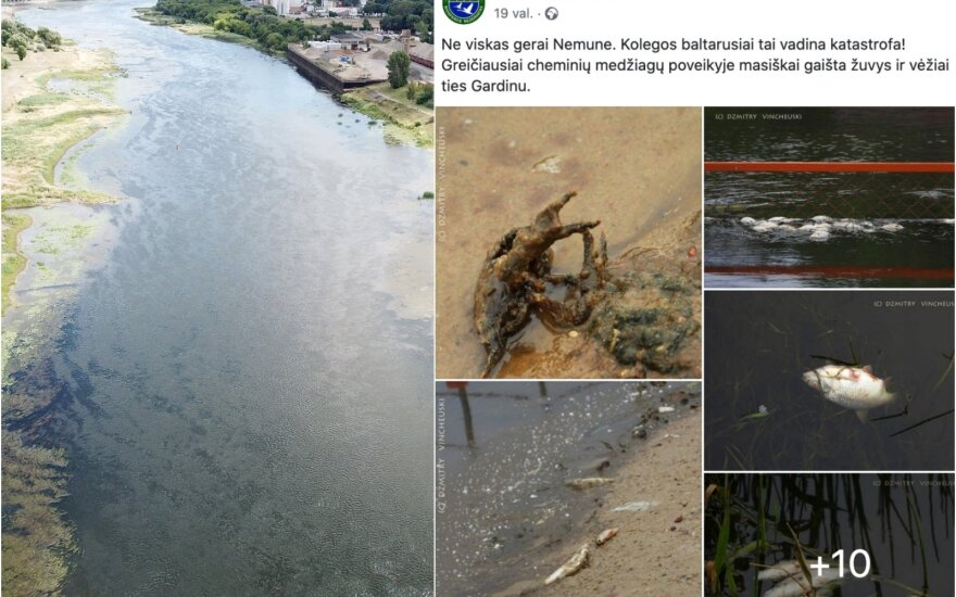 Появились предварительные данные исследований воды из Немана