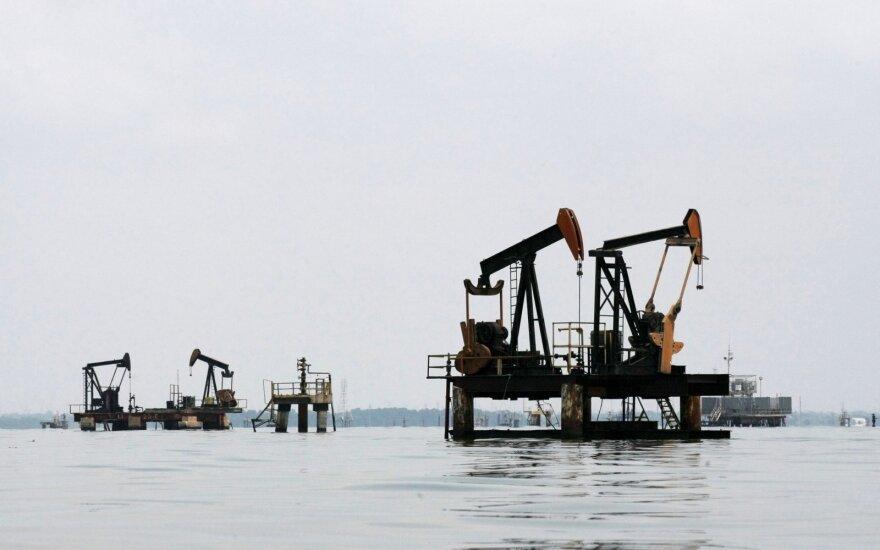 W najbliższych dniach ropa będzie tracić. Cena może spaść do 35 dolarów za baryłkę