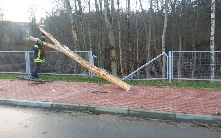 Шторм на взморье: был закрыт порт, повреждены автомобили