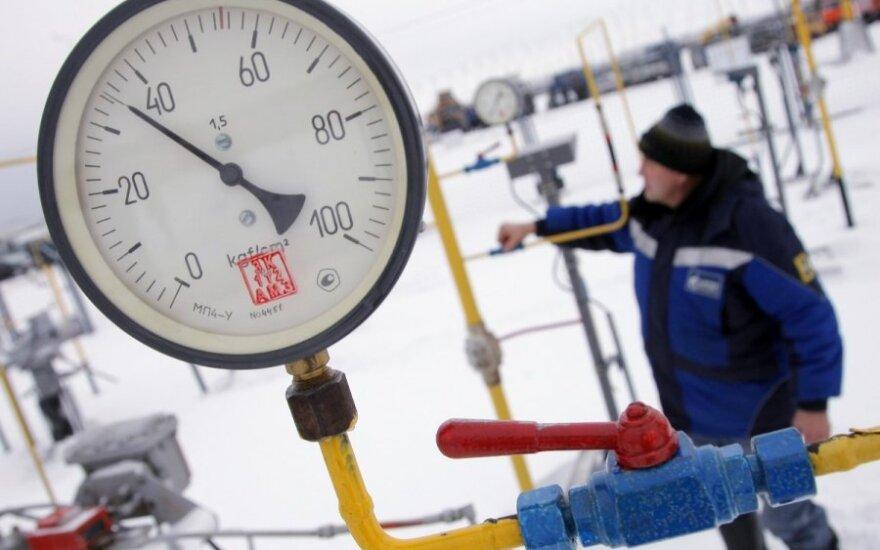 Цена на российский газ в Литве снизилась на 11,3%
