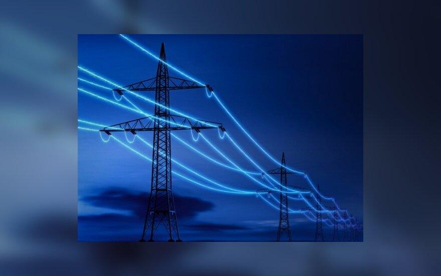 План реорганизации энергетического сектора Литвы подготовит Ernst&Young Baltic