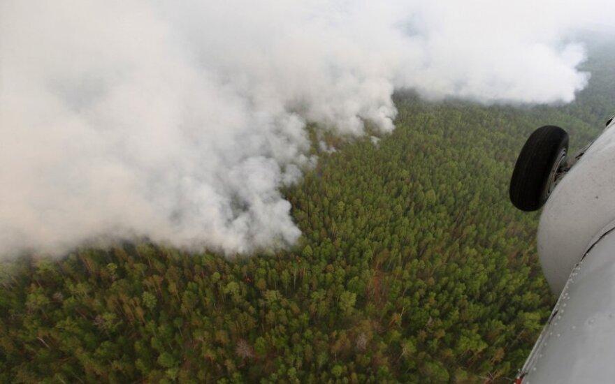 Из-за лесных пожаров в Сибири и на Дальнем Востоке задымлены уже 177 населенных пунктов