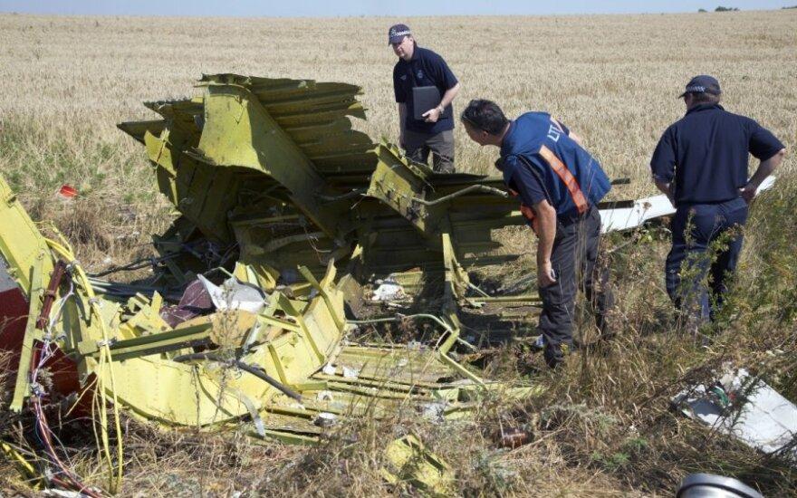 Ekspertai dirba nukritusio Malaizijos oro linijų lėktuvo vietoje