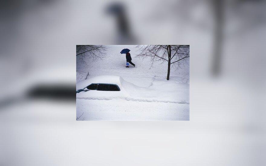 Žiema, sniegas, kelias, pūga, automobilis