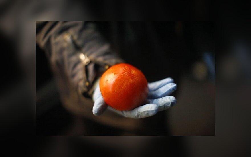 Нацболы отделаются административным наказанием за бросок помидором в короля