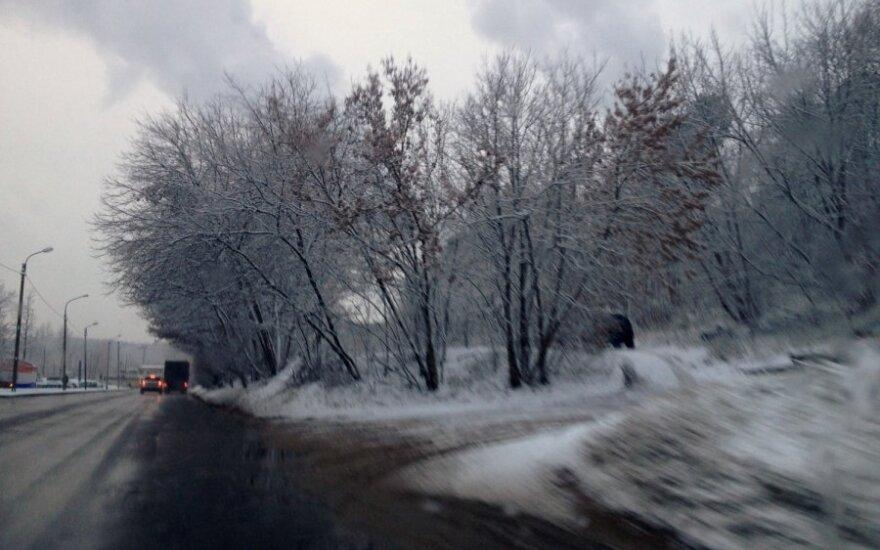 В Вилкавишкском районе сообщили о первой жертве холодов